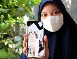 Kisah Tragis Tayo Mengungkap Maraknya Perdagangan Gelap Daging Kucing di Medan